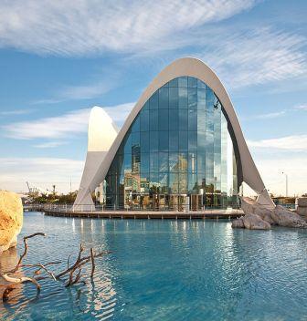restaurante submarino en el Oceanogràfic