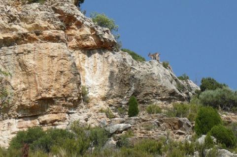 Rincon de la Sierra de Irta