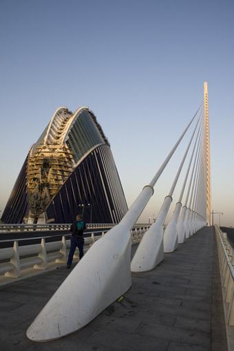 Agora de Santiago Calatrava, ciudad de las artes y de las ciencias