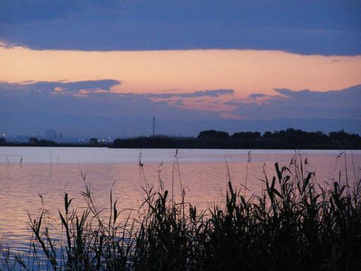Muelle de el lago de la Albufera