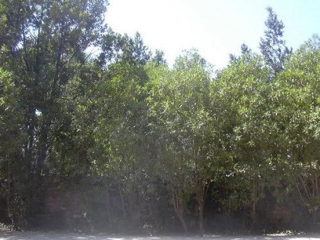 Parajes naturales en Lliria