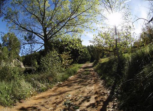 Caminos de la Sierra Calderona