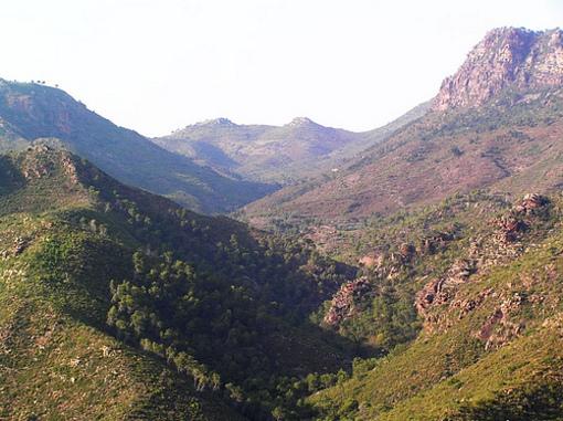 Paseo por la Sierra Calderona