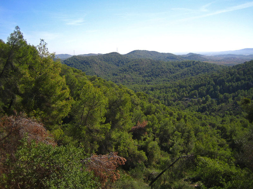 Paraje natural de Les Rodanes en Villamarchante