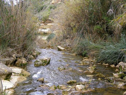 Pedralba y sus parajes anturales en torno al rio Turia
