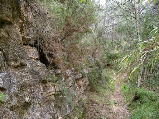 Sendero al lado del rio Turia, Pedralba