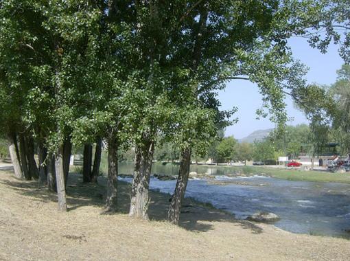 Vegetacion en torno al rio en Bugarra