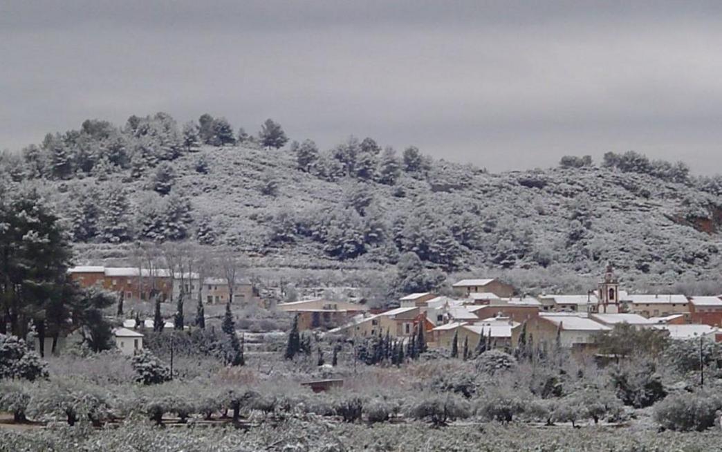 Rugat-1ª Gelà de l'any (8 de Gener de 2010)