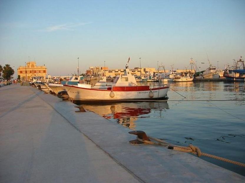 Vista parcial del puerto de Santa Pola