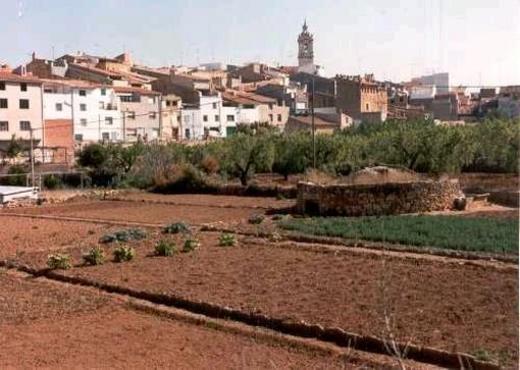 Albocácer (en valenciano y oficialmente, Albocàsser)