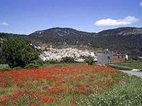 Montán és un municipi de la província de Castelló,