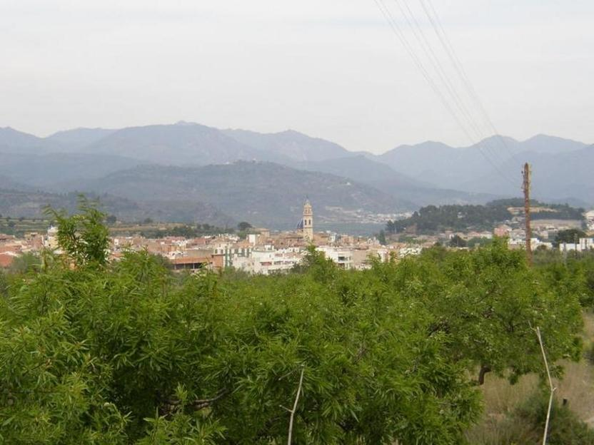 Altura es un municipio de la provincia de Castellón (Comunidad Valenciana, España)