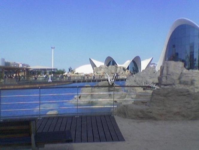 Diseño del Oceanografico, Ciudad de las Artes y las Ciencias