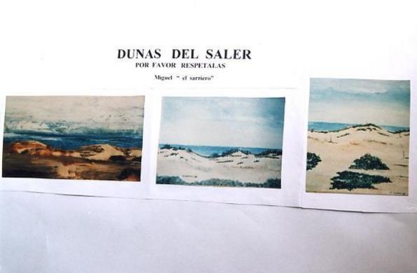 DUNAS  DEL  SALER ( VALENCIA )