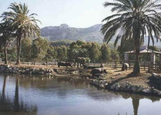 Vergel Safari Park
