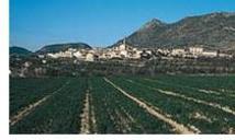 Gayanes en valenciano, Gaianes en la falda de Sierra Benicadell,