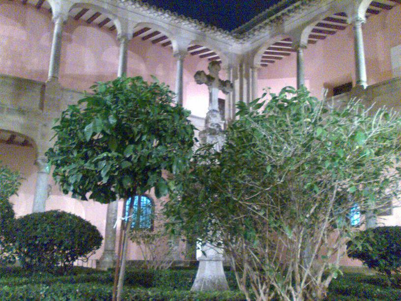 Jardín del Claustro de la Catedral de Orihuela