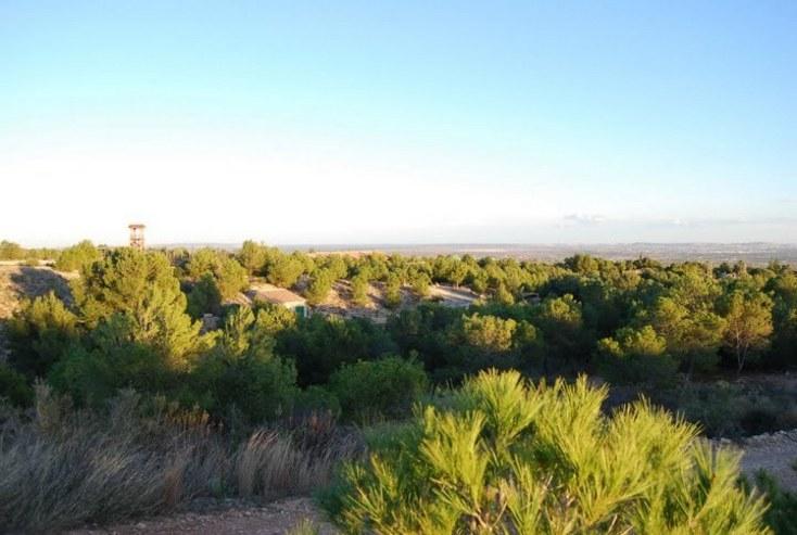 El área recreativa  del Parque de la Montaña en Albatera, Alicante