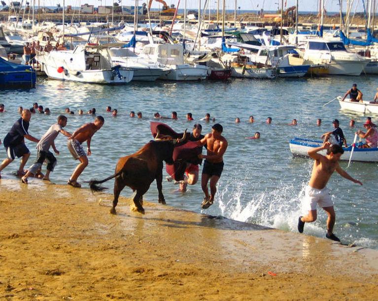 Fiesta patronal de Bous a la Mar en Denia
