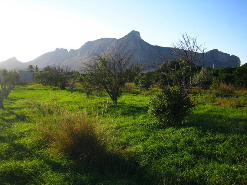 Vista de la montaña Segaria en El vergel