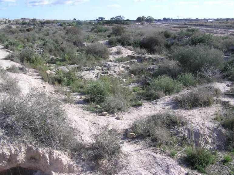 Restos de edificaciones ibéricas, La Escuera, San Fulgencio