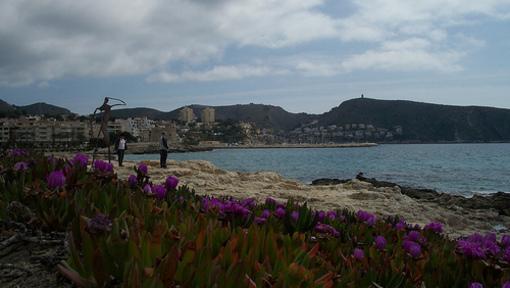 Platja de Moraira entre flors