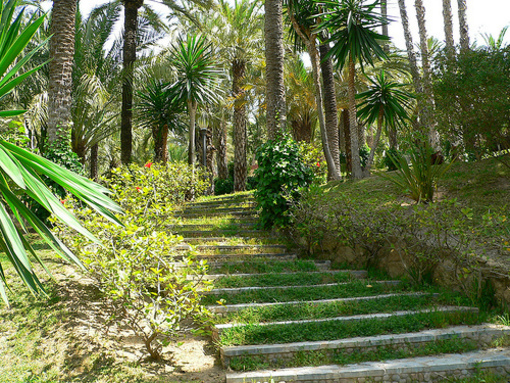 Escalera de el Parque Municipal de el Elche