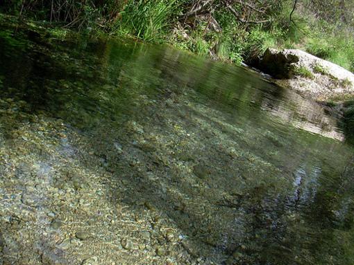 Agua transparente del rio Vinalopo en su nacimiento