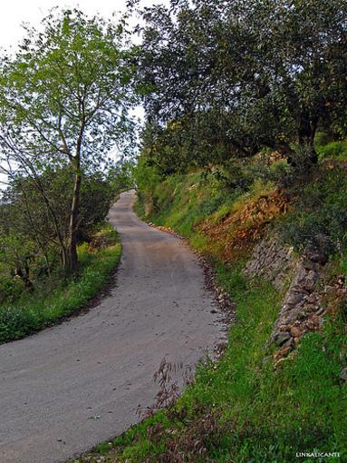 Camino asfaltado por los senderos de Pedreguer