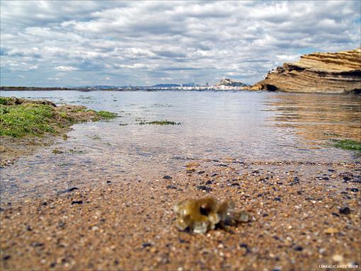 Aguas cristalinas de el Cabo de las Huertas