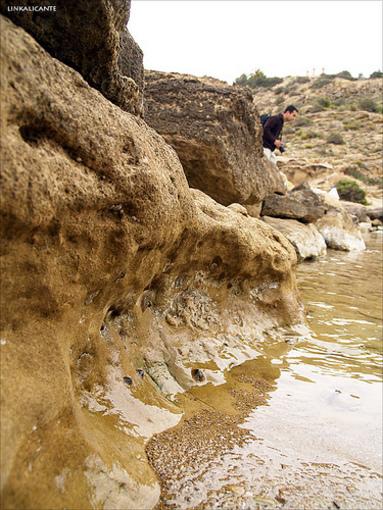 Detall de les roques de les platges de Cap de les Hortes