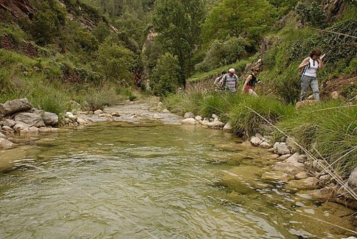 Aguas cristalinas de el Rio Carbo en Villahermosa del Rio