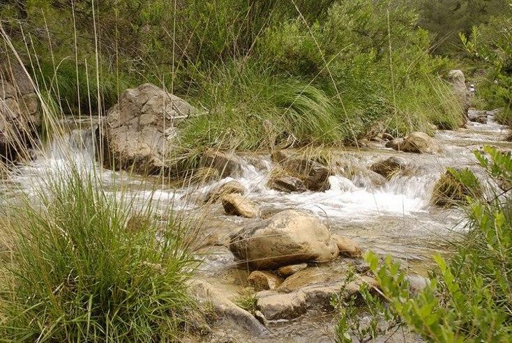 Corriente del rio Carbo entre las rocas en Villahermosa del Río
