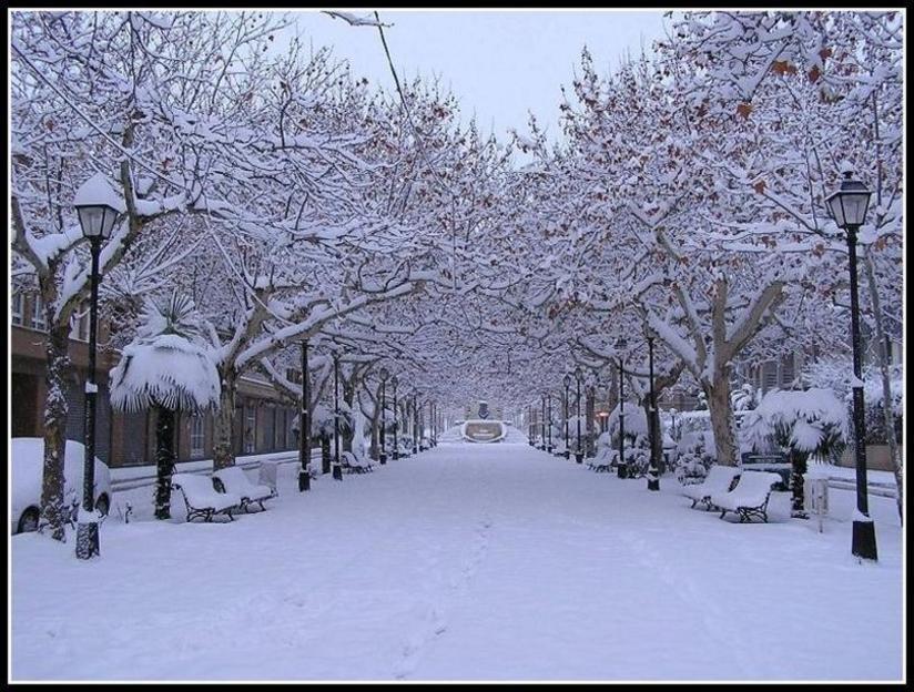 Imagen de la Avenida del Arrabal de Requena en invierno