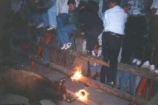 Fiestas taurinas en El Toro