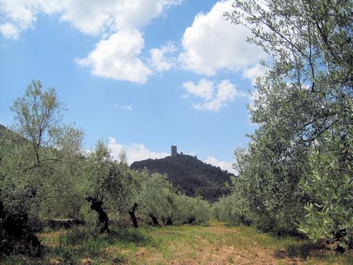 Entorno al Castillo de  Almonacid