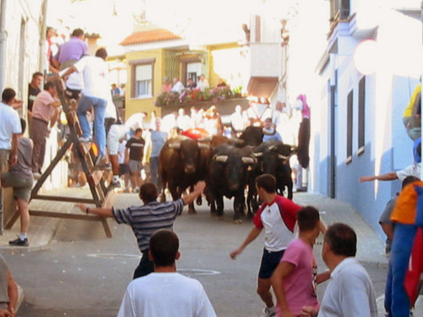 AYORA- Festes d'agost