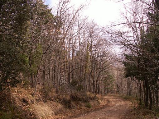 Reserva natural de Peñagolosa