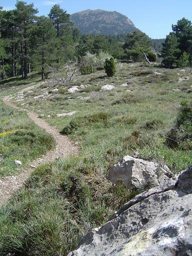Rutes i sendes de Peñagolosa