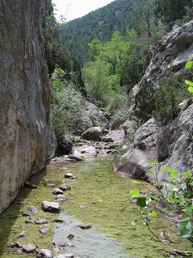 Barranco de la cepera,  Peñagolosa