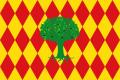 Bandera de Oliva