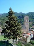 Árbol y Torre en Andilla