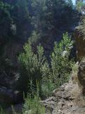 Paisajes de Montán: Pozo de las palomas
