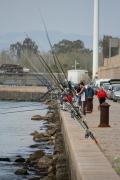 Pesca en el Puerto de Burriana