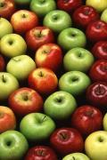 Variedades de manzanas en Ademuz