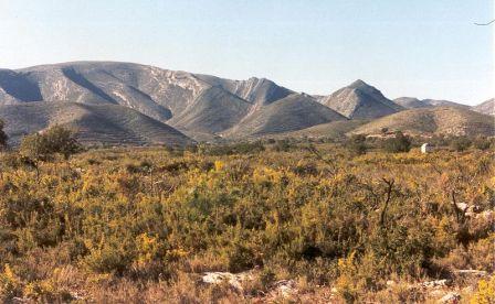 Catadau, la sierra del Caballón