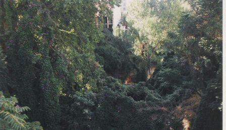 el cauce del rio buñol a su paso por la localidad