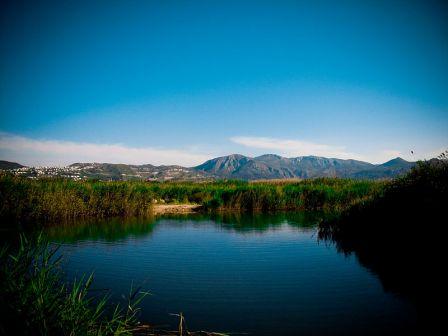 Parque natural Marjal de Pego-Oliva