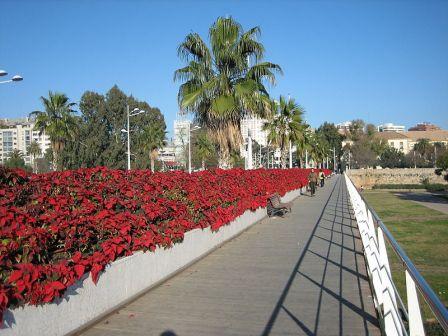 Pasarela del Puente de Las Flores en Valencia